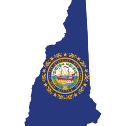A graphic the shape of the state of New Hampshire, filled in with the New Hampshire flag made up of the crest of New Hampshire on a blue field.