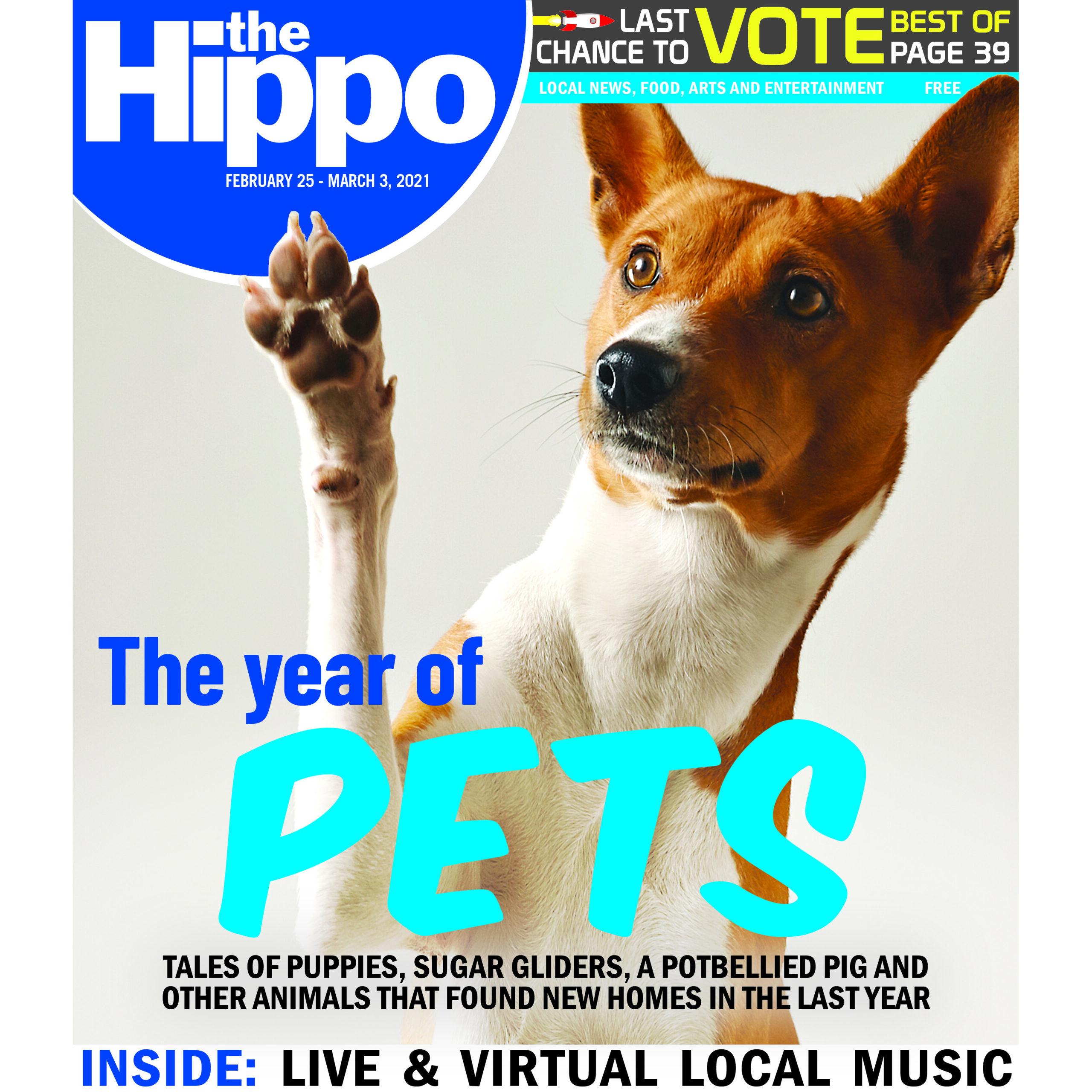Dog on magazine cover