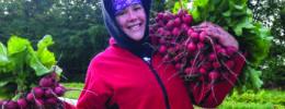 Rebecca Wheeler of The Traveling Taco food truck