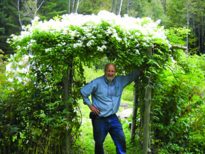 man standing beneath trellis covered in vines blooming with white flowers