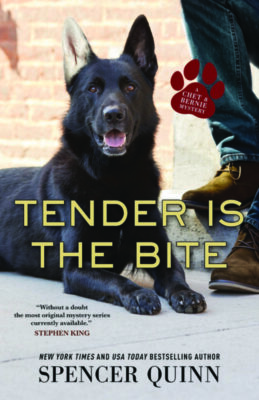 book cover featuring dog on pavement beside man's booted feet
